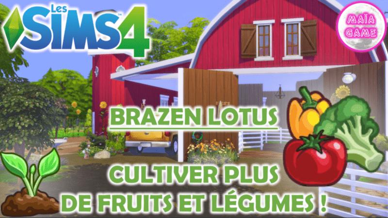 Cultiver Fruits Légumes (1)